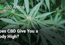 Does CBD Give You a Body High