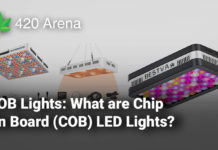 COB Lights: What are Chip On Board (COB) LED Lights?