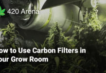 How to Use Carbon Filters in Your Grow Room